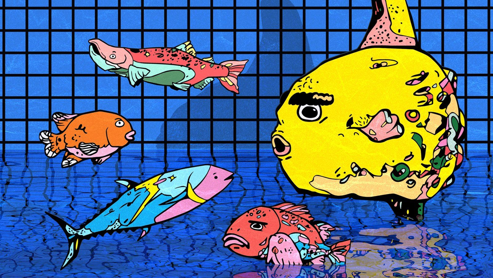 16by9-fish-cover-image-5(small).jpg