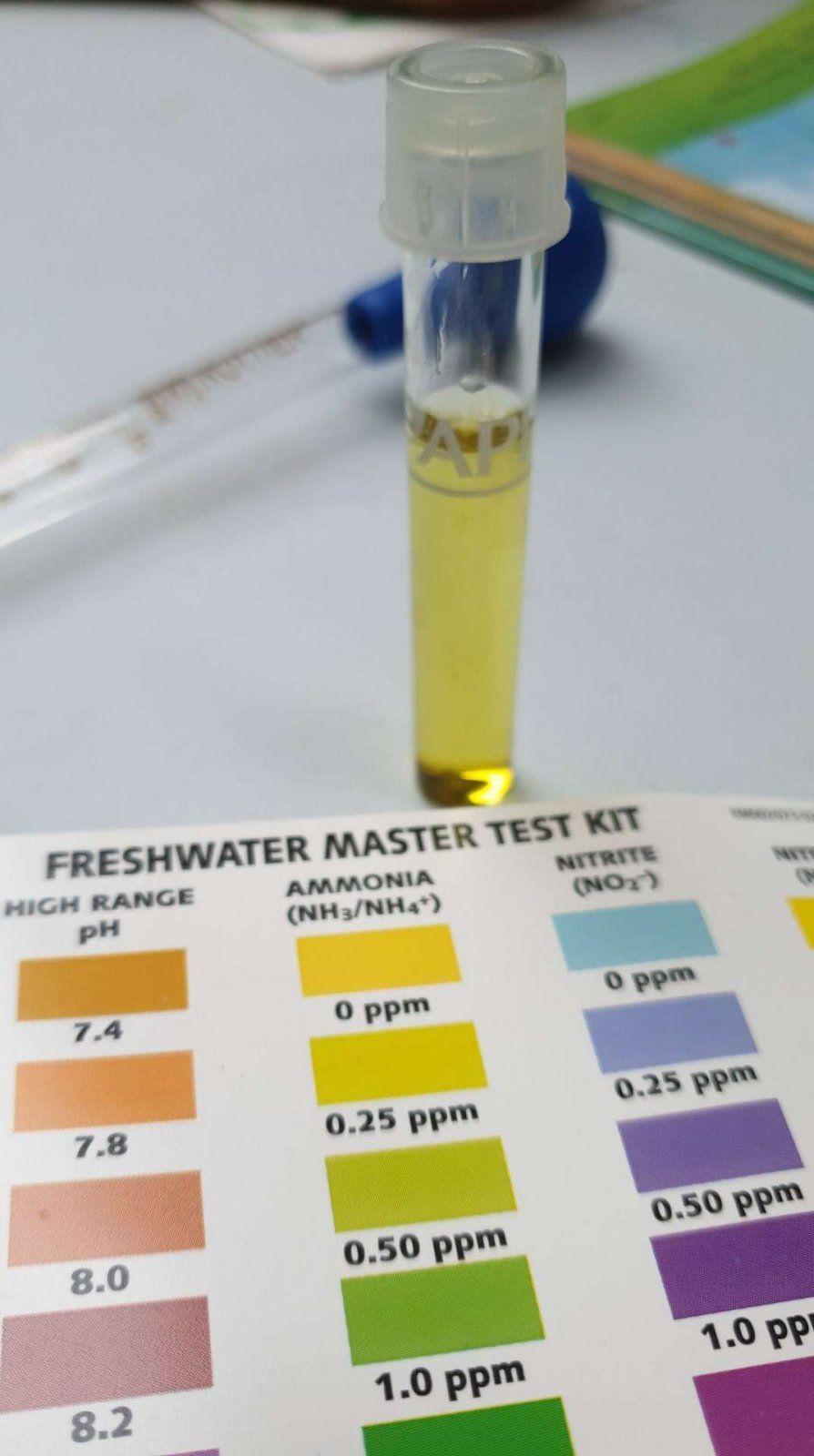 ammonia testing.JPEG