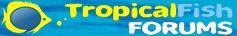 fish-forums-logo.jpg