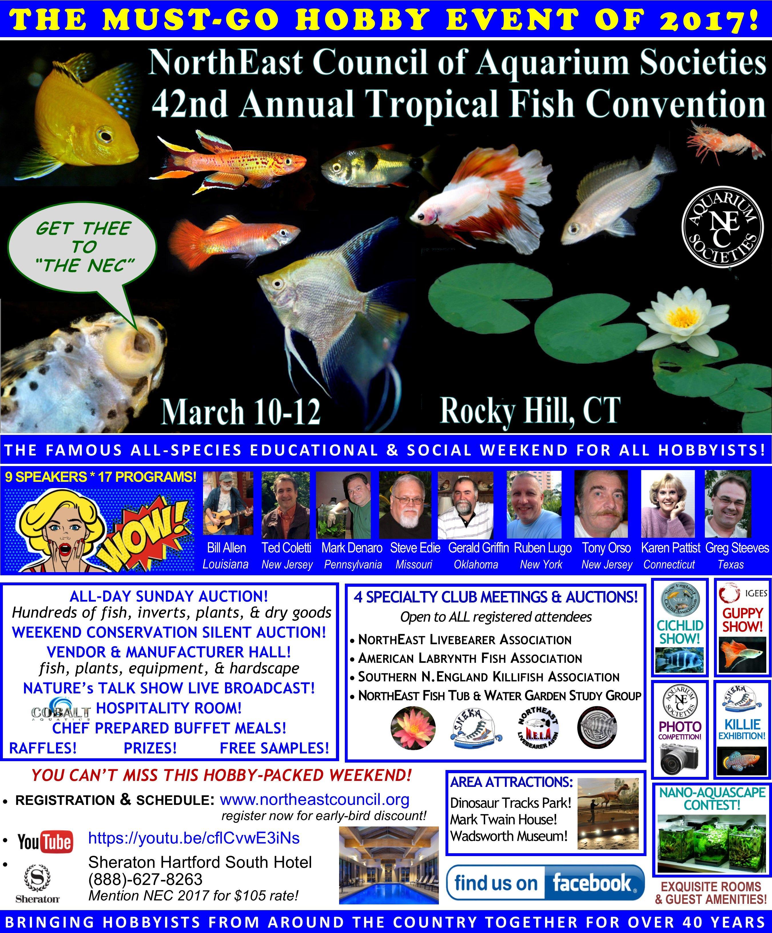 NEC 2017 Convention Flyer 1-17-2017.jpg