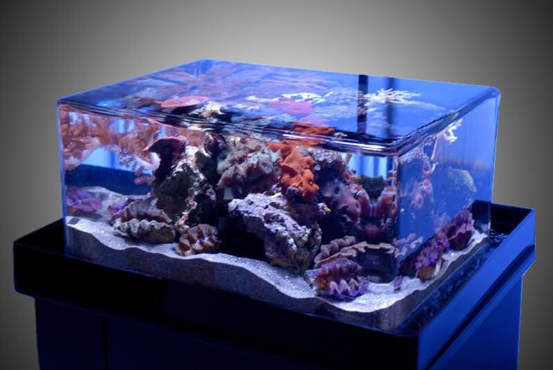 rimless-aquarium.jpg
