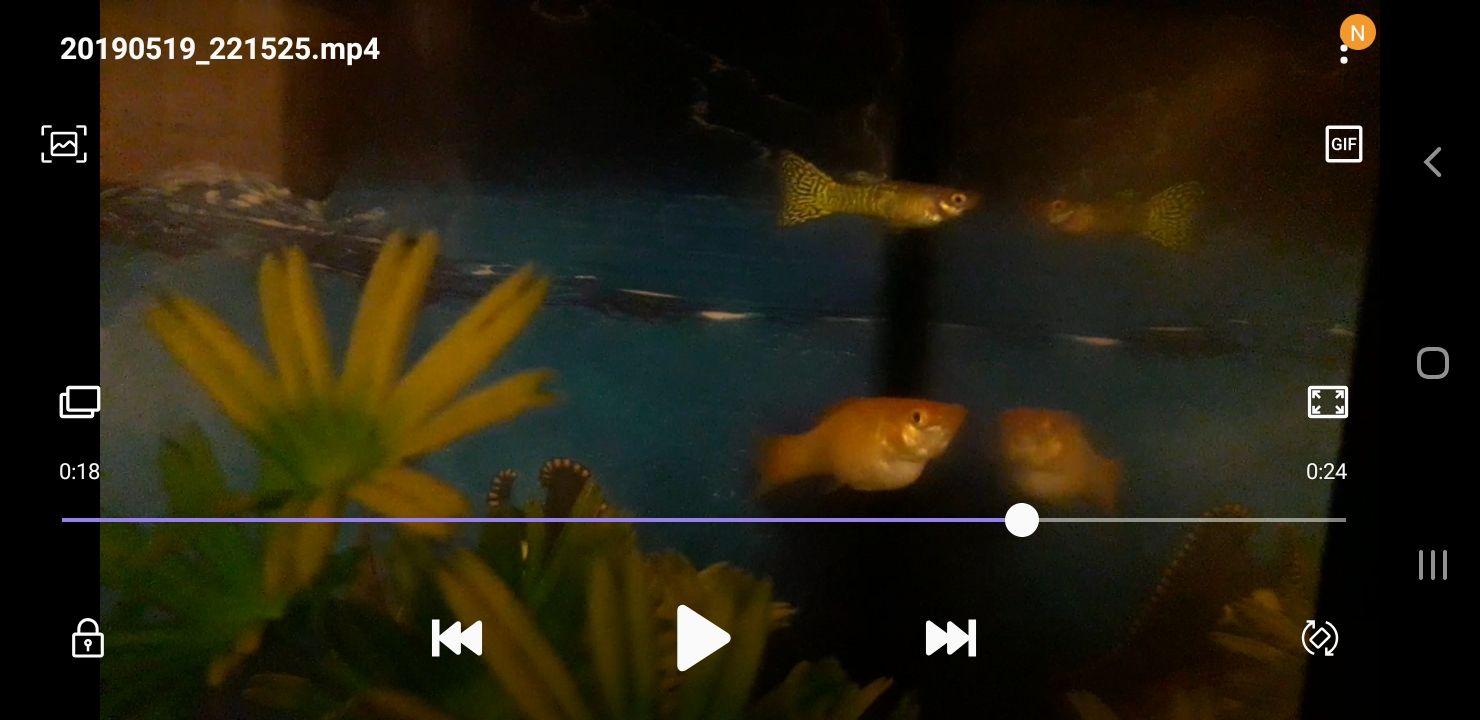 Screenshot_20190519-222154_Video Player.jpg