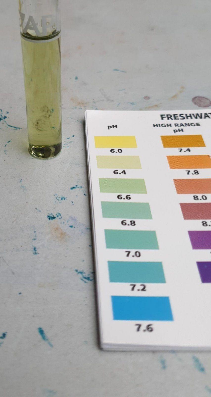 tap water pH 6.jpeg