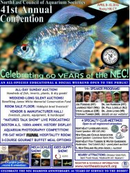 NEC 2016 Convention Flyer 2-4-16 - compressed.jpg