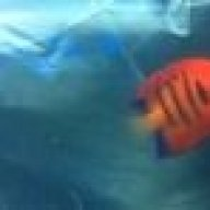 FishAreFriendsNotFood10